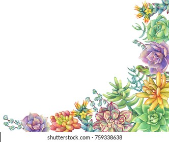 Border with leaves, succulent collection. Watercolor hand drawn painting illustration isolated on white background.