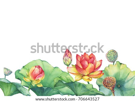 Border poster pink indian lotus flower stock illustration 706643527 border poster of pink indian lotus flower with leaves seed head bud mightylinksfo