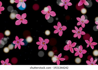 Boronia pink flowers and circle blurred lights with black starry sky background illustration