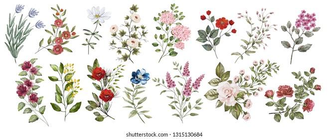 秋の花のイラスト素材画像ベクター画像 Shutterstock