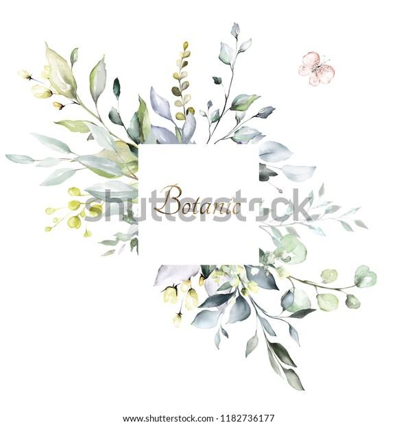 Botanical Design Herbal Banners On White Stock Illustration 1182736177