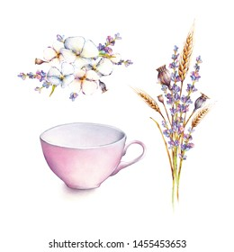 Botanical illustration. White flowers, ears of wheat and lavender with pink mug, isolated on white background. Watercolor illustration