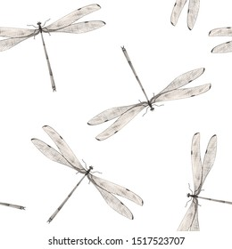 Botanical pencil drawing, dragonfly pattern