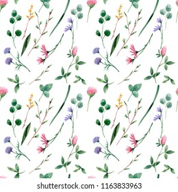 Botanical seamless pattern with wildflowers and herbs. Design for herbal tea, natural cosmetics, perfumes, health care products, aromatherapy and more.