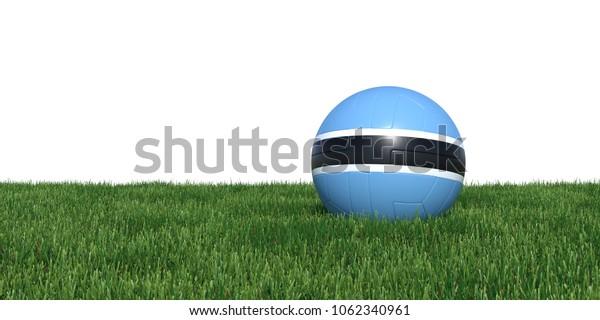 Botswana Botswanan flag soccer ball lying in grass, isolated on white background. 3D Rendering, Illustration.