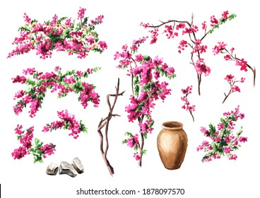 Bougainvillea flower, decorative elements set, Hand drawn watercolor illustration isolated on white background