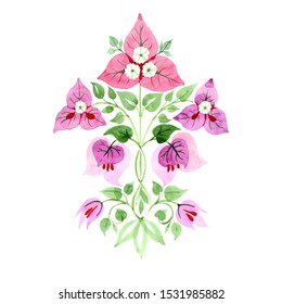 Bougainvillea ornament floral botanical flowers. Wild spring leaf wildflower isolated. Watercolor background set. Watercolour drawing fashion aquarelle. Isolated bouquets illustration element.