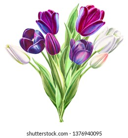 Bouquet of beautiful black and white tulips. Floral collection. Marker drawing. Watercolor painting. Floral composition of design elements. Greeting card. Painted background. Hand drawn illustration.