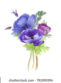 Bouquet with blue and purple anemones, clematis and branches of eucalyptus, watercolor painting