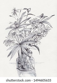bouquet of chamomile in glass bank