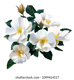 A bouquet of charming white roses in tune with the natural beauty of the human soul