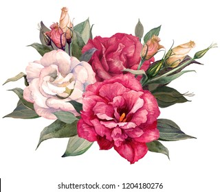 Bouquet of eustomas, watercolor, can be used as greeting card, invitation card for wedding, birthday and other holiday and summer background.