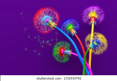 Bouquet of five flowers of blossoming dandelions of unusual colorful colors. Bright multi-colored abstract dandelions on a purple background. Creative conceptual illustration. Ð¡opy space. 3D render.