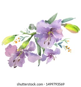 Bouquet floral botanical flower. Wild spring leaf wildflower isolated. Watercolor background illustration set. Watercolour drawing fashion aquarelle. Isolated bouquets illustration element.