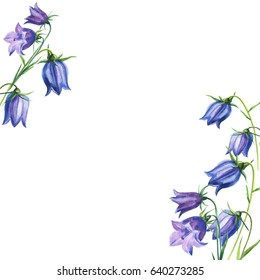 Bouquet flowers  bluebells blue. watercolor illustration hand drawing. Wedding card or invitation with flowers.