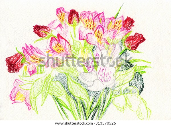 Bouquet Flowers Drawing Colored Pencils Stock Illustration