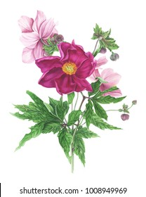 Bouquet of flowers: peony and anemones and leaves, watercolor painting