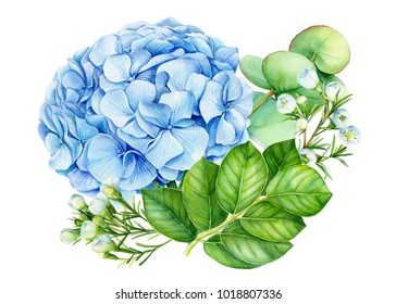 bouquet of flowers, watercolor illustration hand drawing, flora design,  blue hydrangea, eucalyptus leaves, white small flowers