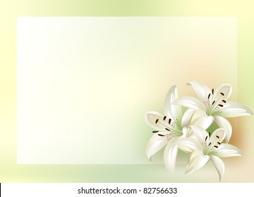 bouquet of lilies with place for your text