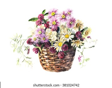 Bouquet from meadow flowers in the basket. Flower backdrop. Watercolor hand drawn illustration