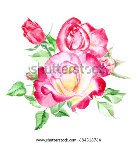 Bouquet pink roses rose bush pink stock illustration royalty free bouquet of pink roses rose bush pink flowers watercolor painting wedding and mightylinksfo