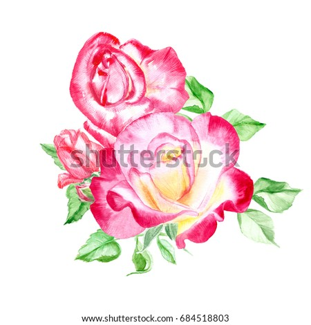 Bouquet pink roses rose bush pink stock illustration 684518803 bouquet of pink roses rose bush pink flowers watercolor painting wedding and mightylinksfo