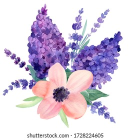 Bouquet  of set of flowers, lilac, anemone, lavender on a white background, watercolor hand drawing, botanical painting, purple flowers