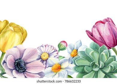 bouquet spring flowers  watercolor, botanical  illustration, tulips, daffodils, daisy, anemones, succulent, greeting card