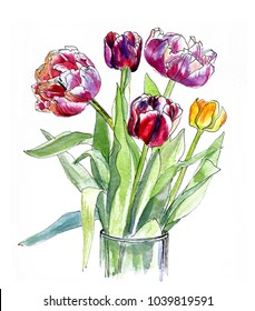 Bouquet of spring tulips in vase, watercolor sketch on white background