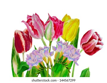 Bouquet with tulips and fressia.Watercolor illustration