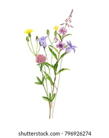 Bouquet of watercolor drawing flowers, hand drawn illustration