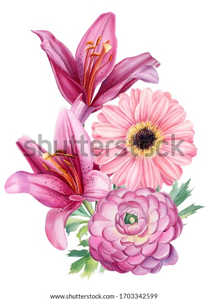 Bouquet of watercolor flowers on an isolated background, hand drawing, pink lilies, ranunculus, tulips, daisies