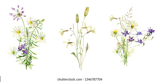 Bouquets of wild, watercolor flowers