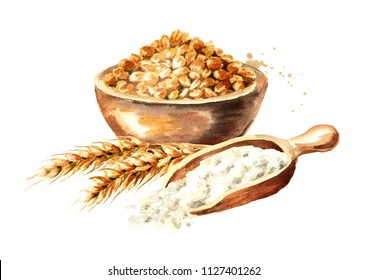 Bowl of grain, ears of wheat and wooden scoop with flour. Watercolor hand drawn illustration, isolated on white background