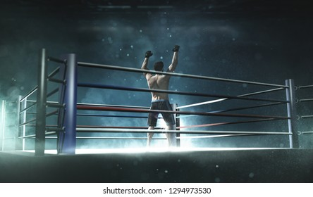 Boxer in a boxing ring 3D Rendering