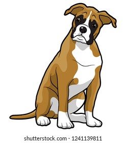 boxer puppy animal pet mascot breed sitiing illustration