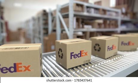 Boxes with fedex logo on conveyor. editorial looping  3D rendering