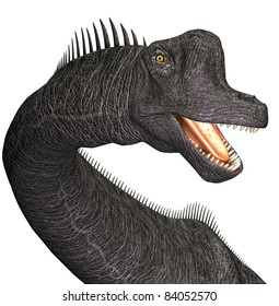 Brachiosaurus closeup of head, mouth open teeth showing. A genus of sauropod dinosaur from the Jurassic Morrison Formation of North America.  Isolated illustration. Clip art cutout