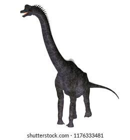 Brachiosaurus Dinosaur on White 3D illustration - Brachiosaurus was a herbivorous sauropod dinosaur that lived in North America during the Jurassic Period.
