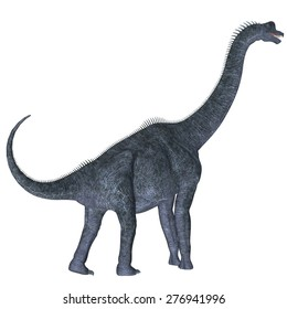 Brachiosaurus over White - Brachiosaurus was a herbivorous sauropod dinosaur that lived in the Jurassic Age of North America.