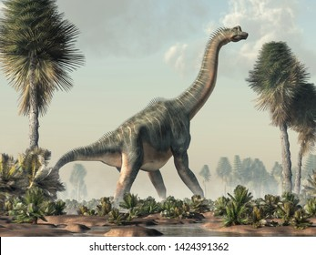 Brachiosaurus was a sauropod dinosaur, one of the largest and most popular. It lived in during the Late Jurassic Period. Standing in a wetland. 3D Rendering