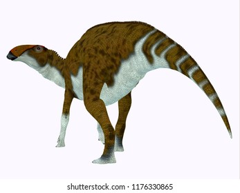 Brachylophosaurus Dinosaur Tail 3D illustration - Brachylophosaurus was a herbivorous Hadrosaur dinosaur that lived during the Cretaceous Period of North America.