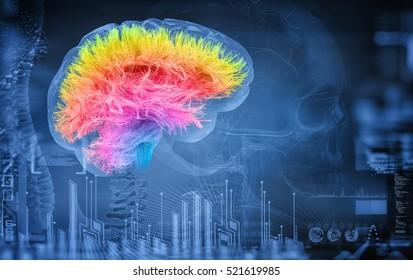 brain; 3d illustration
