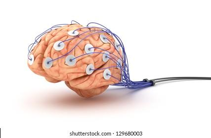 Brain analysis. Polygraph test.