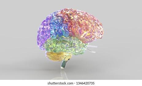 Brain colored 3d illustration