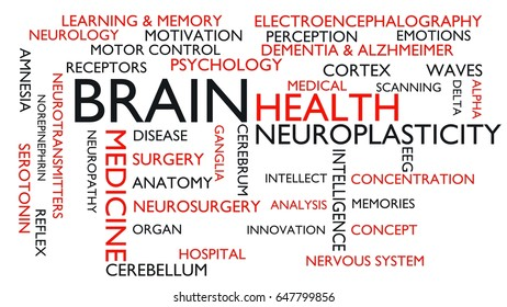 Brain, health word tag cloud. 3D rendering, white variant.