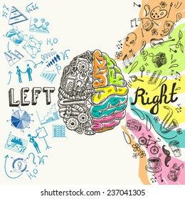Brain left analytical and right creative hemispheres sketch concept  illustration