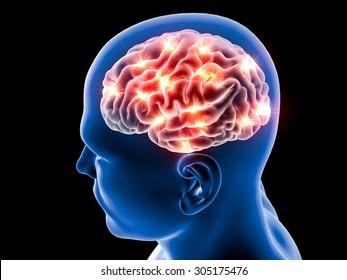 Brain neurons synapse, anatomy body, head profile, disease