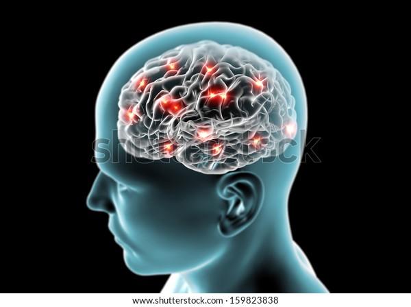 Brain neurons, synapses, reasoning
