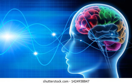 Brain waves - EEG - brain activity